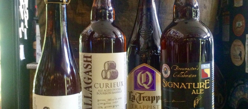 New Arrivals from Pine Street, Allagash, De Proef, La Trappe, and an EXCLUSIVE cider from 101 Cider House!