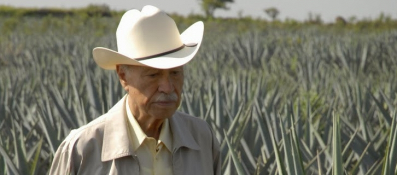 Tequila Highlight: The Don Julio Line up