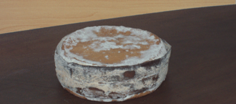 New Cheese Arrivals-07/05/08